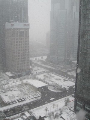 Snow in Beijing